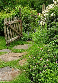Garden gate:  Reminds me of my Grandparents garden gate.