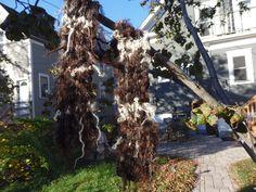 Grizzled Locks handspun handknit Icelandic wool scarf for frigid weather by msfledermaus on Etsy