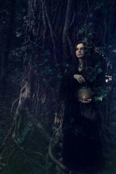 No ♡ da floresta