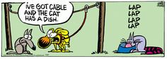 A daily comic strip by Mike Peters, Mother Goose And Grimm. Mother Goose And Grimm, Cat Comics, Calvin And Hobbes, Tarzan, Tv On The Radio, Comic Strips, Puns, The Funny, Cable