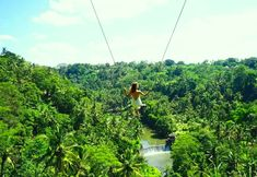 10 Thinges to do in Ubud 6. A Swing Ride at Ayung River – Zen Hideaway! An unparalleled experience that is exquisitely Ubud.