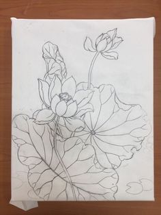 Korean Painting, Chinese Painting, Chinese Art, Lotus Painting, Fabric Painting, Flower Line Drawings, Art Drawings, Lotus Art, Plaster Art