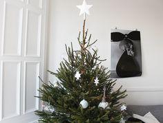O Christmas Tree | Post by Ollie & Sebs Haus