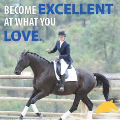 Become excellent at what you love!