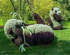 Garden...how cool