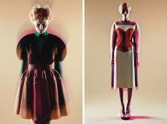 Beauty 3D effect (delpozo-fall-2013-lookbook )