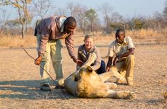 TV chef Sarah Graham goes on an early morning lion walk