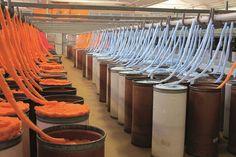 Créée en 1946, l'usine Bergère de France de #BarleDuc est le leader français du fil à tricoter. Elle a la maîtrise de toute la chaîne de fabrication du fil jusqu'à sa distribution. Elle compte parmi les leaders de son marché : elle produit en effet plus de la moitié du fil à tricoter vendu sur le marché français. La visite guidée présente les différents ateliers, de l'arrivée de la matière au conditionnement en pelotes, à la chaîne de préparation des colis.  Crédit photo : Bergère de France