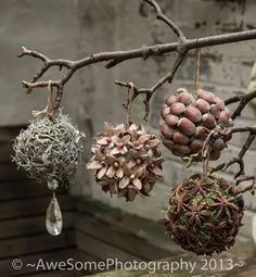 Cheap and Easy Christmas Decorations for Living Room - Pine Cone Ornaments Woodland Christmas, Noel Christmas, Rustic Christmas, Christmas Ornaments, Diy Ornaments, Christmas Ideas, Winter Christmas, Natal Natural, Navidad Natural