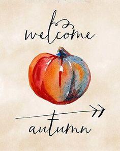 食べ物、秋