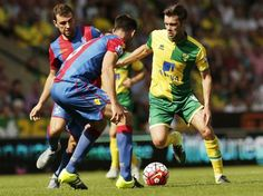 Jonny Howson reacts to Norwich City's Barclays Premier League defeat to Crystal Palace