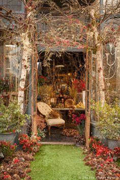 Stunning Christmas floral designs at florist Zita Elze's shop in Kew, London