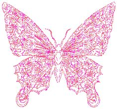 rainbow Glitter Graphic Pretty Butterfly | Pink Butterfly ...