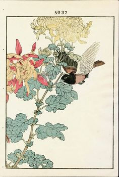 Antique prints of Jinkochyo - Fall l from 1891 Keinen Imao Woodblock 1st Edition Birds & Flowers Japan