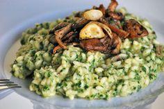 Risotto mit Pilzen und Petersilie - grün eingefärbt - AlleKochen.com