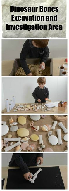 A Dinosaur bone excavation area - investigation, loose parts, archeology, science, fossils, counting, shapes, discovery