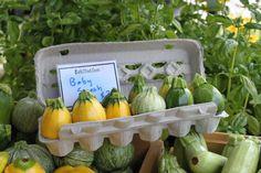 Cutest farmer's market display this year - Rutland, VT August 2011.