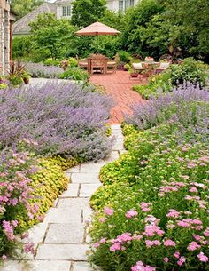 French Country Garden traditional landscape