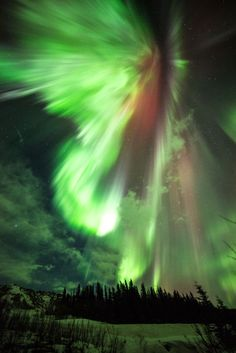 Green and Red Auroras Light Up St. Patrick's Day Dawn