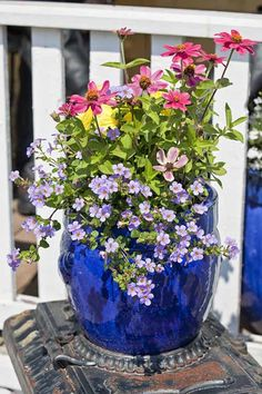 Do your container plants look sad and tired when the dog days of summer roll around? Here's some invaluable (and easy) tricks to keep your containers looking great in the heat, no matter what: https://gardenerspath.com/how-to/containers/tips-for-beautiful-garden-containers/