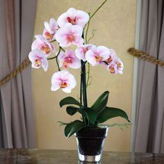 "I pinned this 19"" Pink Phalaenopsis Orchids from the Galiana Silks event at Joss & Main!"