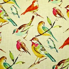 Love this...for dining room?   Song Bird fabric in Multi