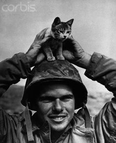 Soldier with Kitten, WWII