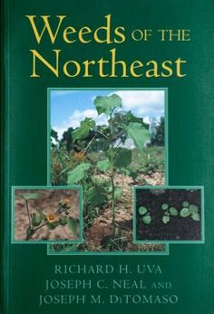 Weeds of the Northeast by Richard H. Uva, Joseph C. Neal, Joseph M. Used Books, Books To Read, Weeding Tips, Dichotomous Key, Most Popular Books, Aleta, Reference Book, Garden Landscape Design, Online Library