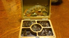 Dr. Ishigakai's Fly Box