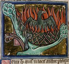 Medieval Bestiary : Phoenix Gallery