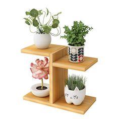 Mini Plants, Potted Plants, Green Plants, Succulent Garden Diy Indoor, Diy Desktop, Wooden Plant Stands, Outdoor Flowers, Plant Shelves, Desk Plant