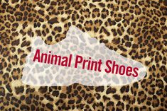 Our animal print shoes will have you living on the wild side. Take a look at trainers, pumps and boots from zebra stripes to leopard print. Neutral Colors, Colours, Leopard Print Boots, Zebra Print, Women's Pumps, Trainers, Range, Live, Sneakers