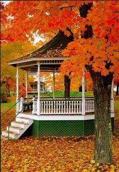 Fall + gazebo = 2 of my favorite things!