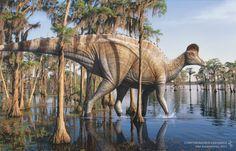 Corythosaurus by Vlad Konstantinov #hadrosaur #paleoart