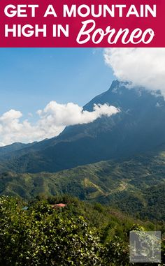 Visiting Kinabalu National Park, in the foothills of Mount Kinabalu, in Borneo.