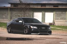 Cruel Intentions: Brendan Hinds' Audi S5