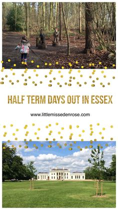 February half term is almost upon us and its another week to entertain the kids. So here are a few ideas for February half term days out in Essex. Days Out With Kids, Fun Days Out, Family Days Out, Travel With Kids, Us Travel, Family Travel, Eden Rose, Things To Do, Castle