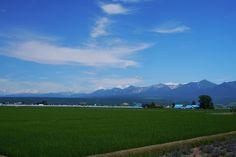 田んぼと大雪山   by bluegreen405