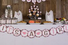 Birdie It's A Girl Banner Baby Shower (Large) - Brown and Pink