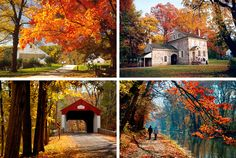 Our Guide To Viewing Gorgeous Fall Foliage In The Philadelphia Region: The Most Scenic Spots And How To Experience Them