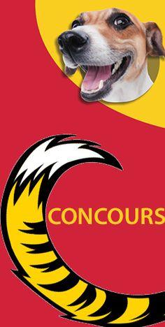 Gagnez une carte-cadeau Tigre-Géant de 500 $. Fin le 23 février.  http://rienquedugratuit.ca/concours/gagnez-une-carte-cadeau-tigre-geant-de-500/