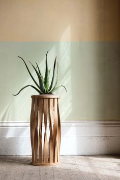 Discover Tom Raffield's exclusive range of innovative, steam bent indoor planters that celebrate the fusion of traditional craftsmanship and nature.