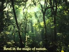 Coorg Destination Guide, Coorg Holiday, Coorg Home Stay