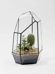 Quartz terrarium jar