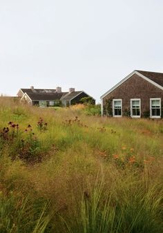 Love the buildings and garden - Nantucket Island. Garden designed by Piet Oudolf.