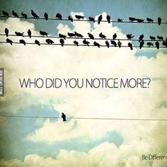 I noticed the words and that's it Motivacional Quotes, Motivational Picture Quotes, Great Quotes, Quotes To Live By, Inspirational Quotes, Bird Quotes, Motivational Wallpaper, Wisdom Quotes, Unique Quotes