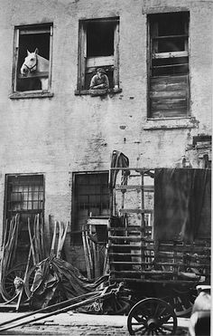 Harold Roth Lower East Side Stable, Mangin Street, 1946