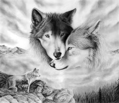 """""""Wolf is the Grand Teacher. Wolf is the sage, who after many winters upon the sacred path and seeking the ways of wisdom, returns to share new knowledge with the tribe. Wolf is both the radical and the traditional in the same breath. When the Wolf walks by you-you will remember."""" -Robert Ghost Wolf"""