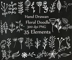 Chalkboard doodle flowers clipart: CHALK FLOWERS от ChiliPapers