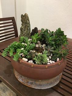 Grattitude my love 🙏🏼 i live our succulent garden very much! Jan 2018, Succulents Garden, Planter Pots, Live